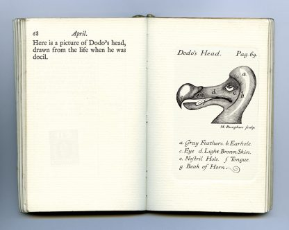 A Dodo at Oxford diary page 68 and 69